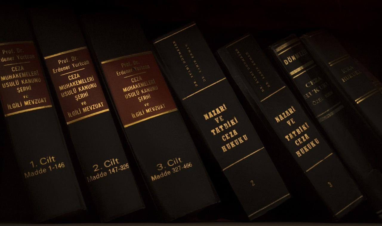 TOP Anwaltskanzlei | Sachbearbeitung (m/w/d) Insolvenzverwaltung | Frankfurt